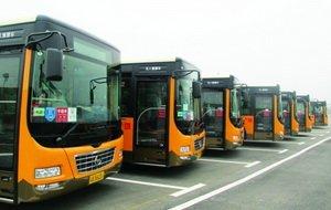 茶园新区开通内循环公交