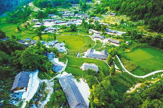 彭水:推进乡村振兴 建设美丽家园