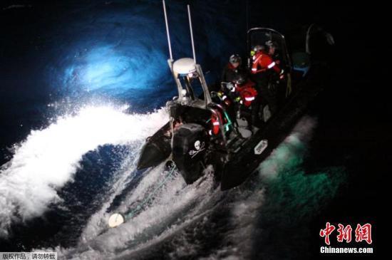 """日本再启""""科研捕鲸"""" 称为""""解析鲸鱼生态之谜"""""""
