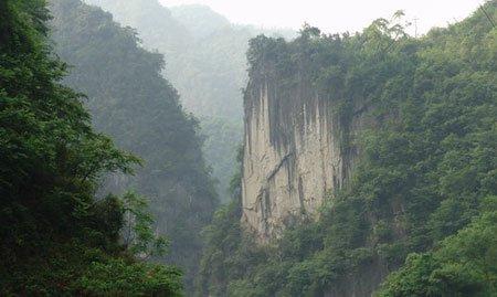 大巴山国家级自然保护区
