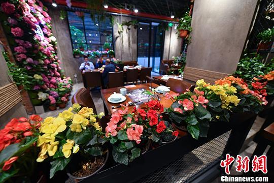 """昆明现""""鲜花主题餐厅"""" 三千余盆鲜花伴客用餐"""