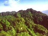 白马山自然保护区