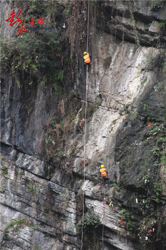 环卫蜘蛛侠 吊着绳索清理悬崖垃圾