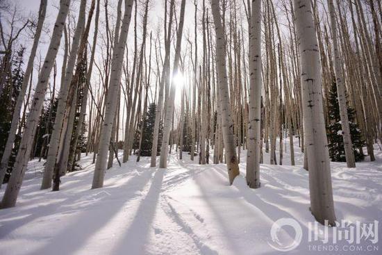 全球最浪漫的冬季度假城市 你要和TA去么?