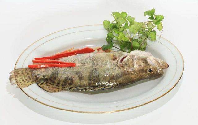 """苏州:标注""""时价""""的鳜鱼 居然收了238元"""