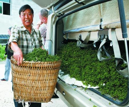 农产品咋跳丰收舞 考验的不仅是农民