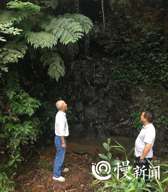 """传说中的长江""""侏罗纪公园""""就在涪陵"""