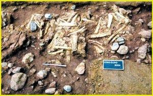 重庆现我国最早人类化石 国人祖先源于三峡