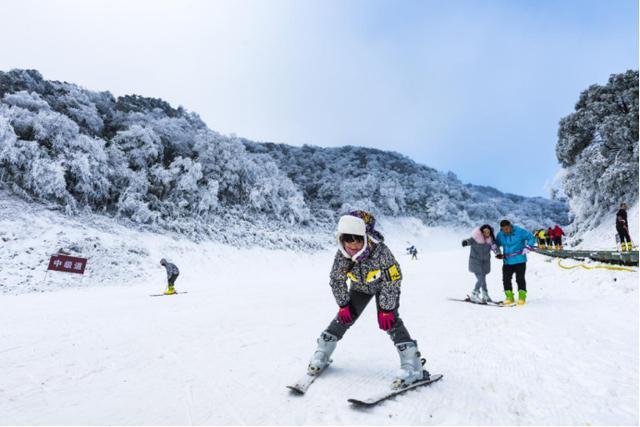 冬来金佛山滑雪泡温泉!第20届金佛山冰雪节精彩开幕