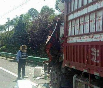 两辆货车相撞 200箱蜜蜂倾巢而出