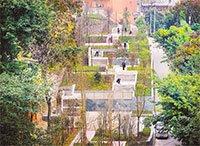 沙坪坝区:今年新建16个社区公园