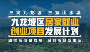 九龙坡区居家就业创业项目发展计划