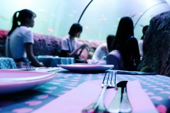 海底派对欢乐多 环保美食两不误