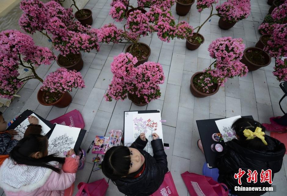 """日,2016""""冬之韵""""梅花?杜鹃花节在湖南省森林植物园开幕,盛开"""