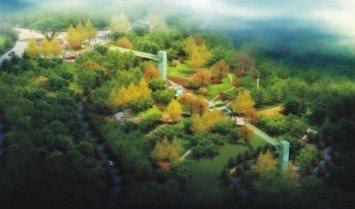 大调蝶变之建造心中的庭院南山查竹子南山园林景观v大调说明图片