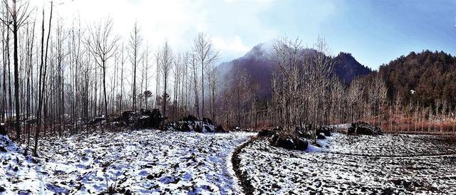 马扎营迎今冬首场降雪 雪后雾凇奇观迷人眼