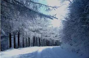 下雪了!开州这个地方已美成童话