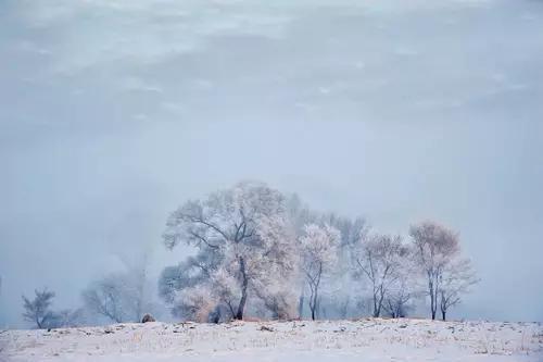 这才是国内最美的冬天 只有1%的人敢去!