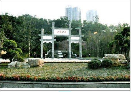 龙洲湾定位生态园林新城 打造宜居范本(图)