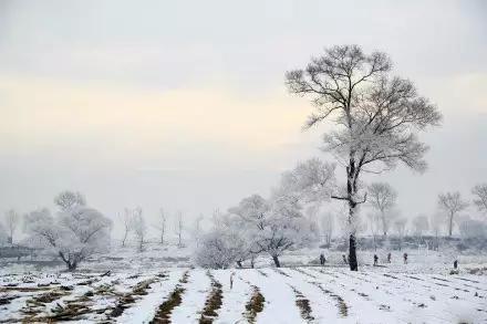 这才是国内最美的冬天 只有1%的人敢去!4