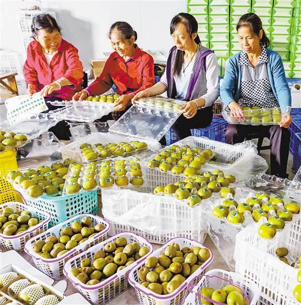 南川:产业扶贫助贫困户增收
