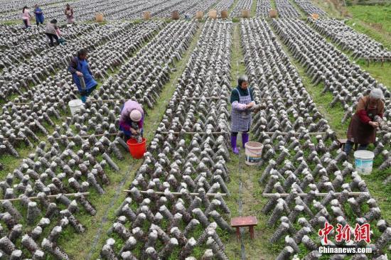 中国中等收入群体超3亿人 2050年有望达9亿人以上