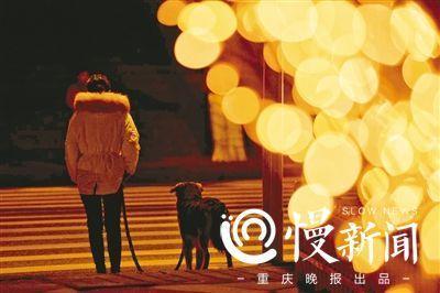 渝中区迎春灯饰昨晚亮灯刷爆朋友圈