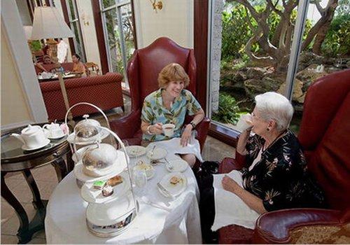 将茶作为一种爱好,现在想要深入了解一些茶文化知识,应该怎么做?