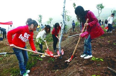 绿化长江 全市4000余大学生一天植树20000棵