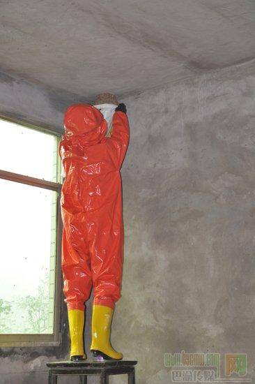 马蜂屋顶筑巢消防战士及时摘除
