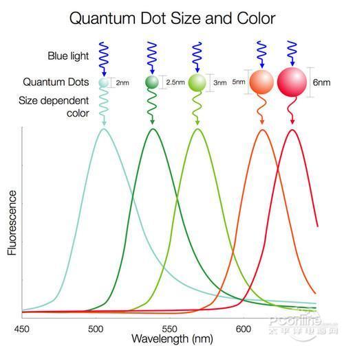 最近火热的量子点显示器到底有多强?