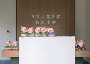 北妇儿童大脑建构实训中心开业