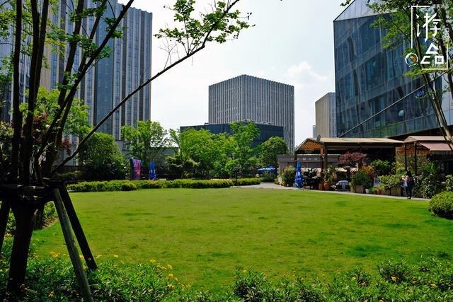 重庆闹市里的空中花园 极少有人知晓