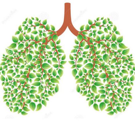 重庆一男子体检发现双肺多发结节 5个结节均为肺癌