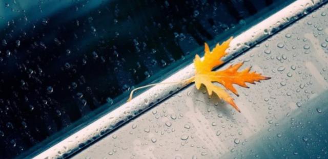 一场秋雨一场寒 秋冬不感冒秘诀在这里