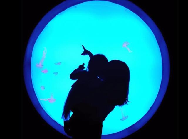 汉海海洋公园7月限时疯狂放价 门票低至79元