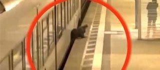 男子被卡火车与站台间奇迹生还