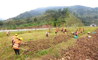 万利高速工人正在种植绿化 打造一个景观带
