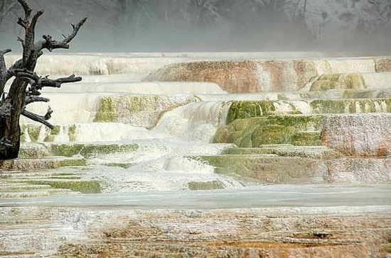 深度报道:2012标志~美国黄石公园现异常现象(图说) - 外星人给地球的忠告 * 2012 - UFO外星人不明飞行物和平天使2012