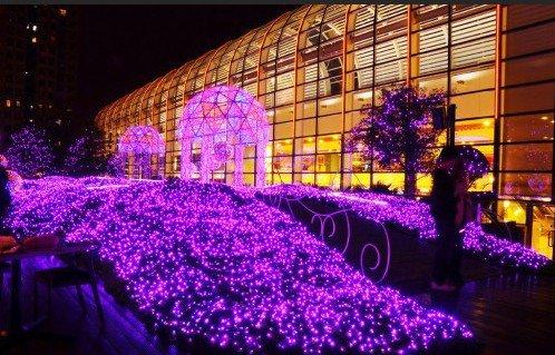Star Light Garden夜景拍摄技巧