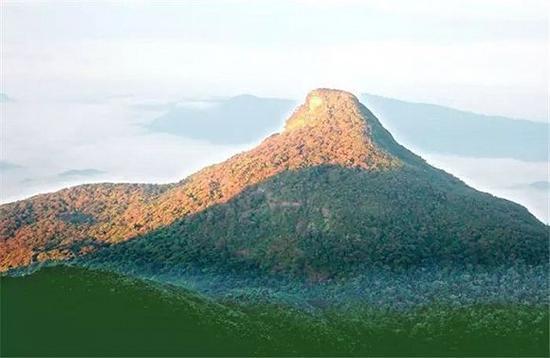奇妙导游 人与动物和谐相处的最美岛屿