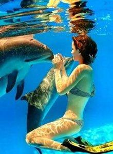 汉海鲸豚湾水世界