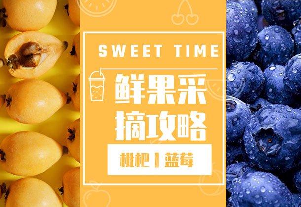 34家水果采摘攻略 枇杷低至10元/斤 最后1周错过等1年