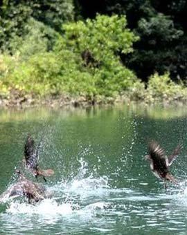 金家坝水库:新的的旅游亮点