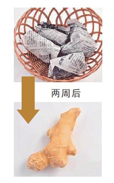 生姜用纸包着放