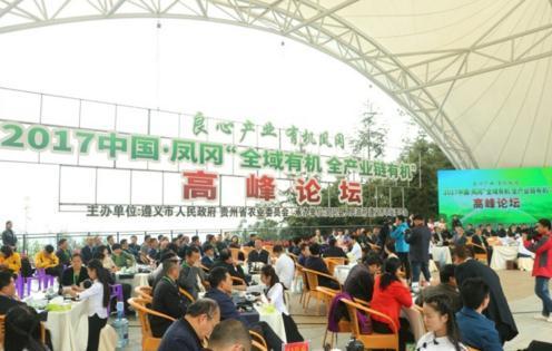 百余专家大师齐聚凤冈 有机论坛瑜伽表演精彩纷呈