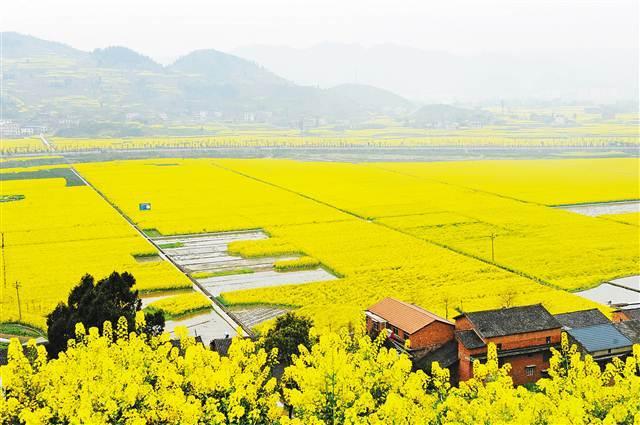 重庆发布73条春季踏青赏花精品线路