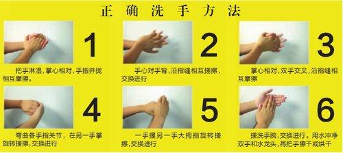 幼儿洗手步骤矢量图