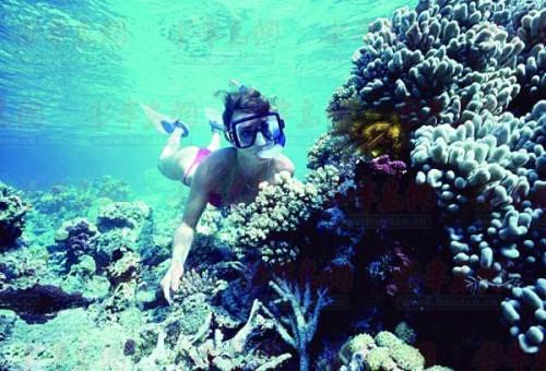 春节家庭游推荐:南太平洋遗落的珍珠 斐济