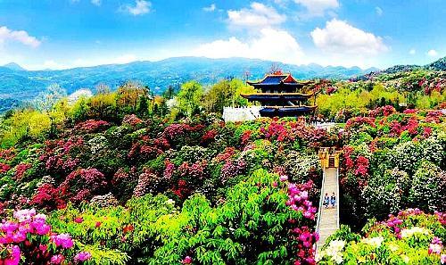 贵州毕节邀重庆市民享13℃清凉 23个康养项目火热推荐